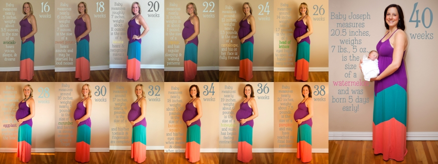 16 weeks to 40 weeks pregnant, pregnancy progression, baby bump